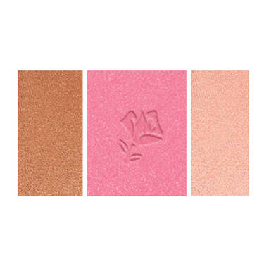 Blush Subtil Palette